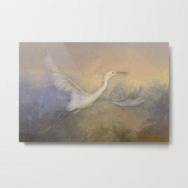 Snowy Egret - Taking Flight Metal Print