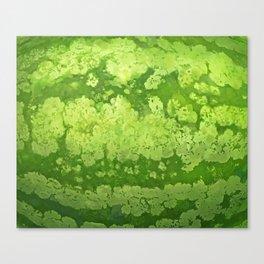 Watermelon texture Canvas Print