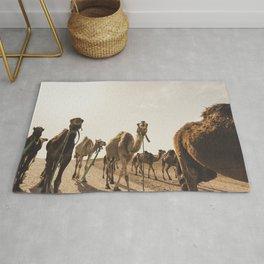 Camels in Desert Rug