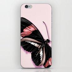 Papillon rouge et noir iPhone & iPod Skin