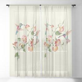 hummingbirds & morning glories Sheer Curtain