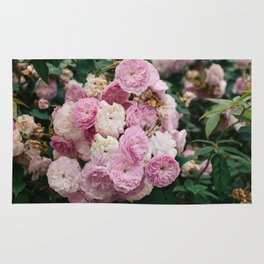 The smallest pink roses Rug