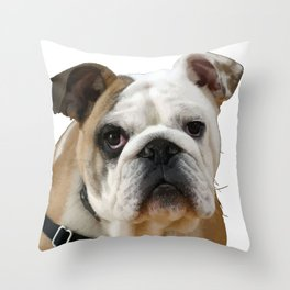 American Bulldog Background Removed Throw Pillow