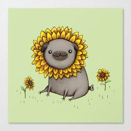 Pugflower Canvas Print