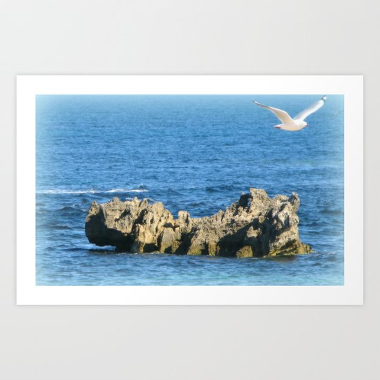 Flying seagull and rock Art Print