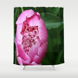 Peony planted by Grandpa Shower Curtain