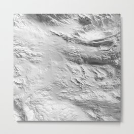 Moon Surface -Grey and White- Metal Print
