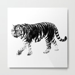 Tiger Prowl Metal Print