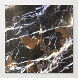 Stylish Polished Black Marble Canvas Print