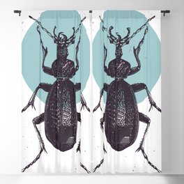 Black Beetle bug with blue moon Blackout Curtain