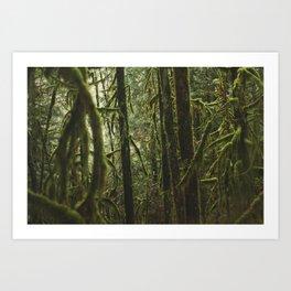 Capilano Art Print