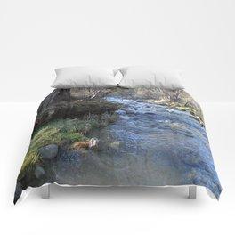 East Fork Hayfork Creek.... Comforters