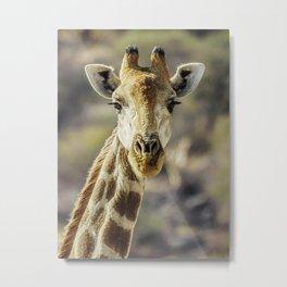 Giraffe lookig at you Metal Print