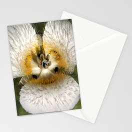 Mariposa Lily 3 Stationery Cards