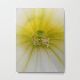 Petunia - iPhoneography Metal Print