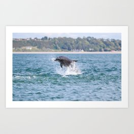 dolphin eating a fish Art Print