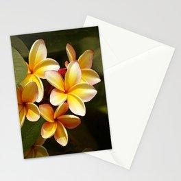 Elegant Simplicity is the Hawaiian Plumeria Stationery Cards