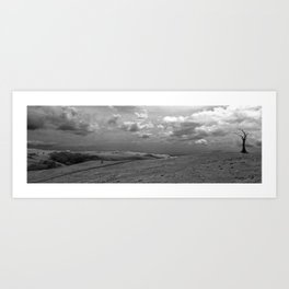 Dead Lonely Tree Art Print
