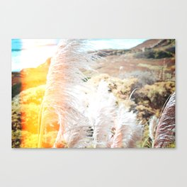 Sea Side Cliffs vol2 Canvas Print
