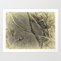 angel wings Art Prints featuring Angel wings by Paul & Fe Photography