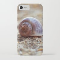 seashell iPhone & iPod Cases featuring Seashell by Ekaterina La