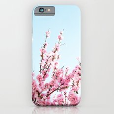 Pink Blossom  iPhone 6s Slim Case