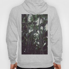 Pulse of Nature Hoody