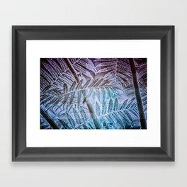 Fern Forest Framed Art Print