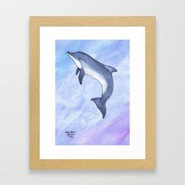 Bottlenose Dolphin Framed Art Print