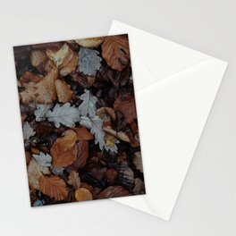 AUTUMN - LEAVES - PHOTOGRAPHY Stationery Cards