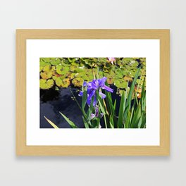 An Igniting Attraction II Framed Art Print