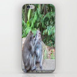 Crab-eating Macaque IV (Balinese Monkey) iPhone Skin