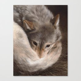 Timber Wolf Painting Canvas Print