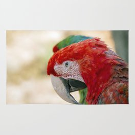 Green Winged Macaw Portrait Rug