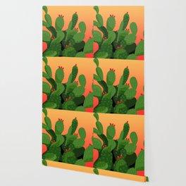 Prickly Pear Desert Sunset Wallpaper
