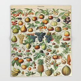 Fruits Vintage Scientific Illustration French Language Encyclopedia Lithographs Educational Throw Blanket