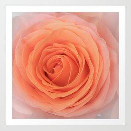 Parisian Rose Garden Peach Number 1 Art Print