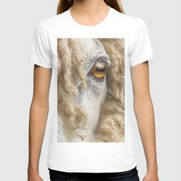 Sheep 2 T-shirt