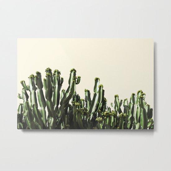 cactus nature VI Metal Print
