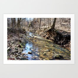 Alone in Secret Hollow with the Caves, Cascades, and Critters, No. 10 of 20 Art Print