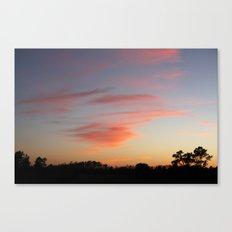 Orange wisp  Canvas Print