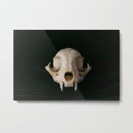 Cat Skull Metal Print