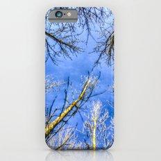 The Tree Canopy iPhone 6s Slim Case