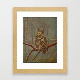 Vintage Illustration of an Owl (1902) Framed Art Print