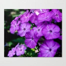 Floral Beauty #4 Canvas Print