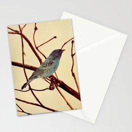 Neltje Blanchan - Bird Neighbours (1903) - Indigo Bird Stationery Cards