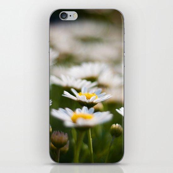 Daisy Field iPhone Skin