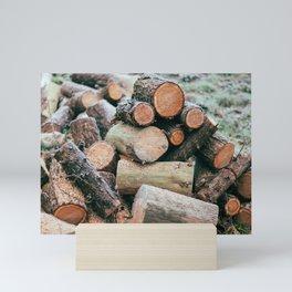 Sawn logs of trees   Nature Photography Mini Art Print