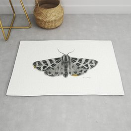 Kintsugi - A Graphite Drawing of a Moth by Brooke Figer Rug