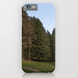 Image of forest in the autumn period, a side road plunges into the forest iPhone Case